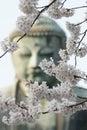 The great buddha in Kamakura Japan / Daiputsu Royalty Free Stock Photo