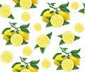 Great illustration of beautiful yellow lemon fruits on white background. Water color drawing of lemon. Seamless pattern