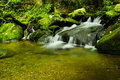 Great smoky mountain national park creek in the Stock Photo