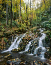 Great Smoky Mountains Stock Images