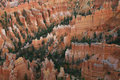 Great spires carved away by erosion in Bryce Stock Photography