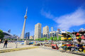 Great view of toronto down town area, buildings cn tower Royalty Free Stock Photo