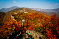 Great wall of china the best view the that fulfill with autumn leaves scene Stock Photography
