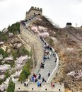 Great wall of china world famous attraction tourist Royalty Free Stock Images