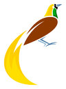 Greater bird of paradise stylized vector illustration Royalty Free Stock Images