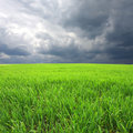 Greeen field and heavy clouds Royalty Free Stock Photo