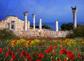 Greek buildings on the black sea coast of ukraine the ruins of the ancient crimea hersonissos sevastopol Stock Photography