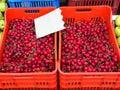 Greek Farmers Market, Ripe Red Cherries Royalty Free Stock Photo