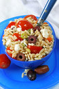 Greek Pasta Salad Royalty Free Stock Images