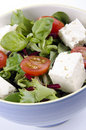 Greek salad with goat cheese Royalty Free Stock Photography