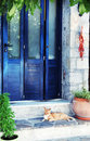 Greek street red cat in blue doorway  (Crete, Greece) Royalty Free Stock Photo