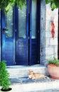 Greek street red cat in blue doorway (Crete, Greece) Royalty Free Stock Photo