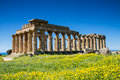 Greek Temple at Selinunte Royalty Free Stock Photo