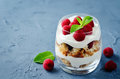 Greek yogurt raspberry biscuit parfait Royalty Free Stock Photo
