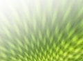 Green abstract background copy space Royalty Free Stock Images