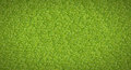 Green abstract background texture of  grass Stock Photos