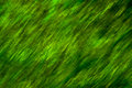 Green abstract image Royalty Free Stock Photography
