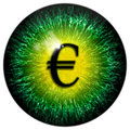 Green abstract mad business man eye with euro pupil Royalty Free Stock Photo