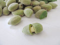 Green almonds. Royalty Free Stock Photo