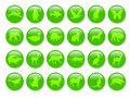 Green animals icons Stock Images
