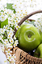 Green apple with flowers Stock Images