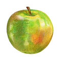 Green apple illustration on white background, hand drawn sketch, food element, juicy ingredient, organic