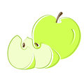 Green apple with segments. Vector. Stock Photo