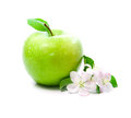 Green apple with spring flowers Stock Photography