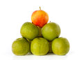 Green apples, one yellow with red blush on top Royalty Free Stock Photo