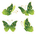 Green art butterfly flying, floral golden ornament Stock Photography