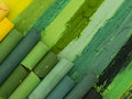 Green artistic crayons in the row creating colorul image Stock Images