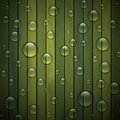 Green background of wood texture ecological concept Royalty Free Stock Photography
