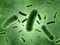 Green bacteria colony d rendering of seen through electron microscope Stock Image