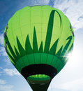 Green balloon on blue sky Stock Image
