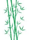 Green bamboo stems Royalty Free Stock Photo
