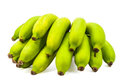 Green bananas raw bunch isolated on white background Stock Image