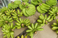 Green bananas for sale at fruit market koh pha ngan thailand Stock Photo