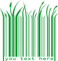 Green barcode with text Royalty Free Stock Photo