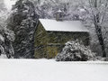 Green barn in a snow storm weathers an early season nestled deep woods against protective pine trees Royalty Free Stock Photography