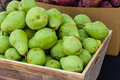 Green bartlett pears for sale at market on display the farmers Royalty Free Stock Images