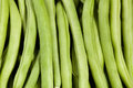 Green beans closeup many tile Royalty Free Stock Images