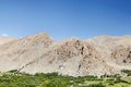 The green and the beautiful mountains of ladakh Royalty Free Stock Photo