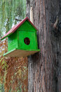 Green birdhouse in nature Royalty Free Stock Photo