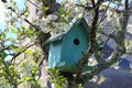 Green Birdhouse In A Tree