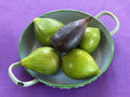 Green and black figs Stock Images