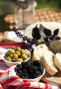 Green and black olives on the table with chopped fresh ciabatta Royalty Free Stock Photos