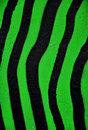 Green and black stripes Royalty Free Stock Photo
