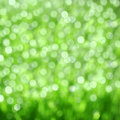 Green blurred background abstract natural Stock Photography