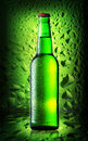 Green bottle cold beer Royalty Free Stock Photo