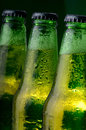 Green bottles of beer closeup three with caps Stock Image